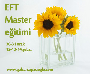 EFT Master İstanbul 2016